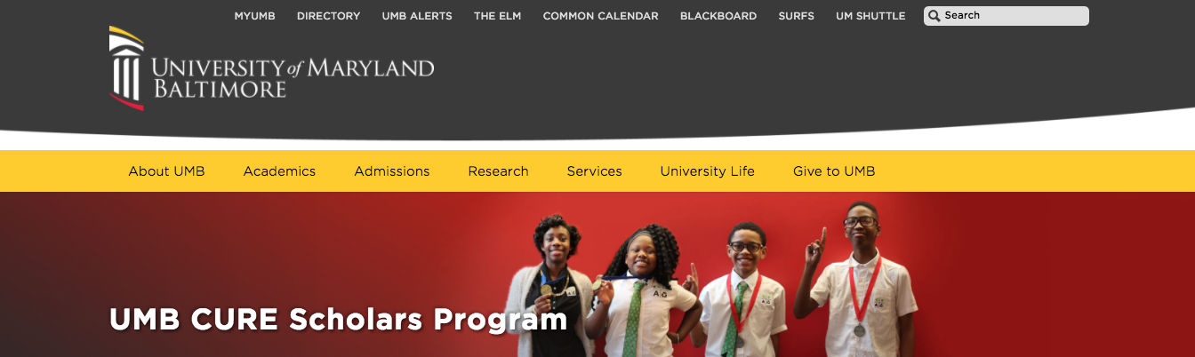 A screenshot of the banner template in place on the CURE Scholars site