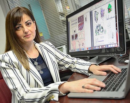 University of Maryland School of Medicine associate professor Aikaterini Kontrogianni-Konstantopoulos, PhD, studies the OBSCN gene and obscurin proteins.