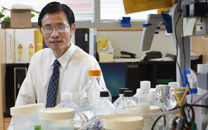 Huakun Xu, PhD, MS, professor and a founder of the Biomaterials and Tissue Engineering Lab in the Department of Advanced Oral Sciences and Therapeutics at the University of Maryland School of Dentistry, has received the International Association for Dental Research 2018 Isaac Schour Memorial Award.
