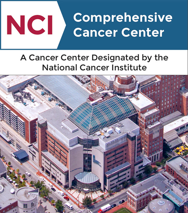 The University of Maryland Marlene and Stewart Greenebaum Comprehensive Cancer Center has been awarded the National Cancer Institute's highest designation.