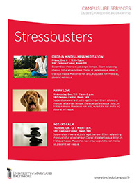 Stressbusters info- pink flyer