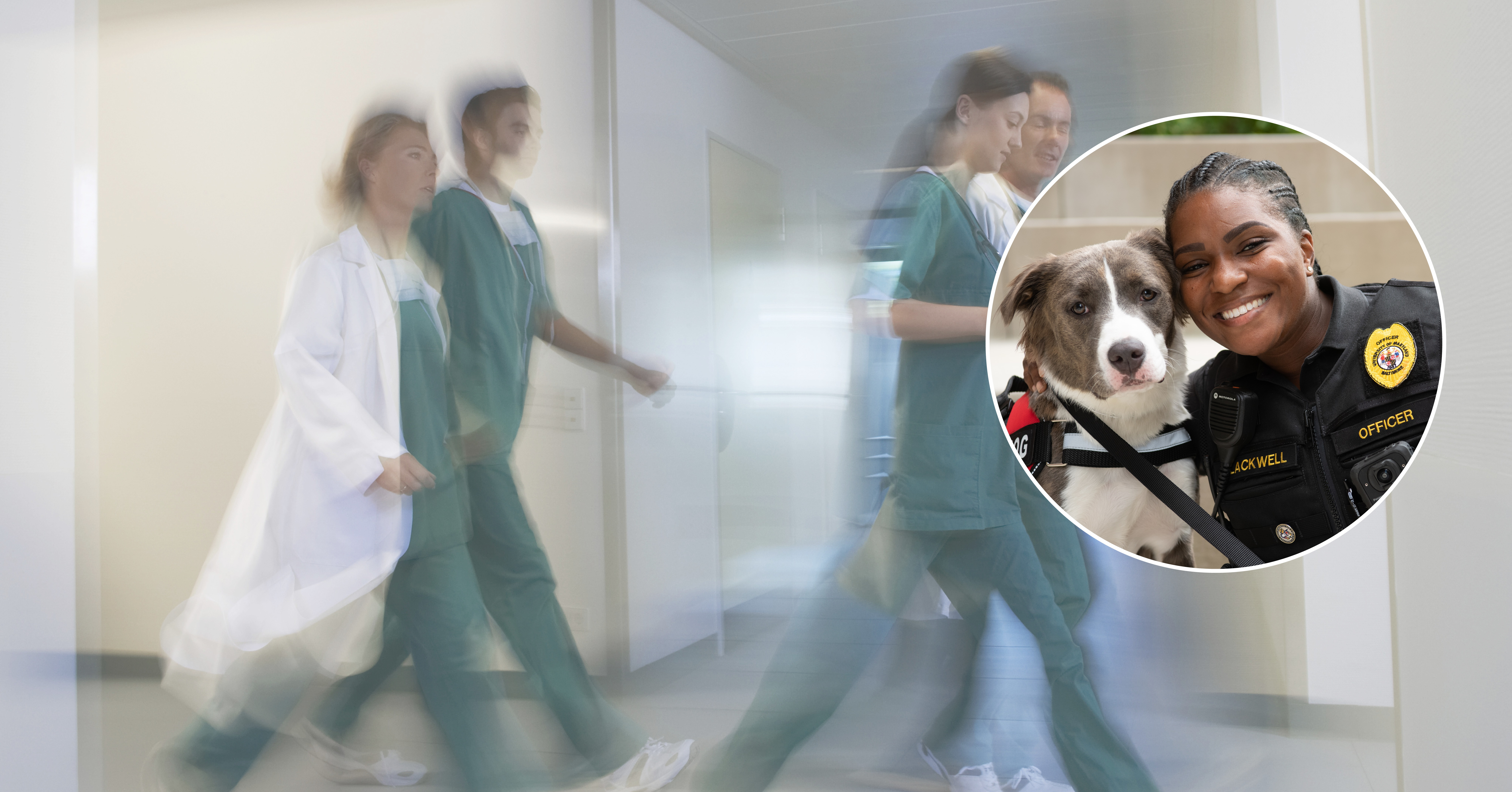 health professionals walking down an isle with side picture of police office and dog