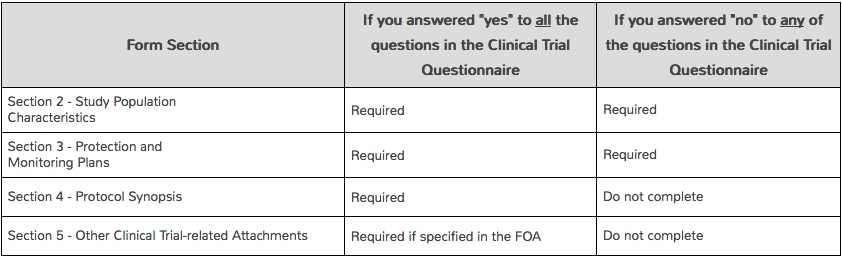 Screenshot from NIH proposal instructions