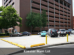 Koester Main Lot